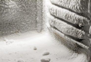 Frost-in-Freezer